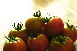Baby tomatoes too